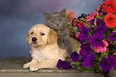 DOK 01 RK0492 01