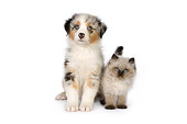 DOK 01 RK0502 01