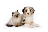 DOK 01 RK0504 01