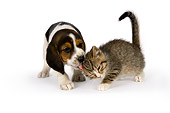 DOK 01 RK0510 01