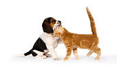 DOK 01 RK0512 01