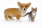 DOK 01 RK0514 01