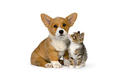 DOK 01 RK0515 01