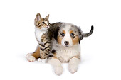 DOK 01 RK0517 01