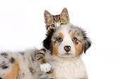 DOK 01 RK0518 01