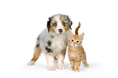 DOK 01 RK0521 01