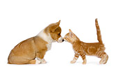 DOK 01 RK0526 01