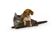 DOK 01 RK0527 01