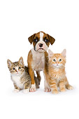 DOK 01 RK0531 01