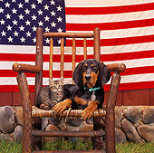 DOK 01 RS0016 03