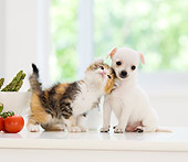 DOK 01 YT0002 01