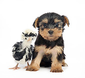 DOK 02 XA0019 01