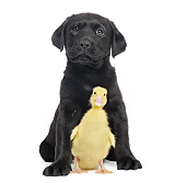 DOK 02 XA0023 01
