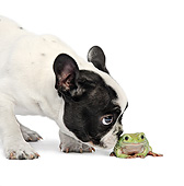 DOK 02 XA0026 01