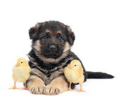 DOK 02 XA0030 01