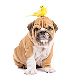 DOK 02 XA0034 01