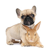 DOK 02 XA0035 01