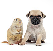 DOK 02 XA0041 01