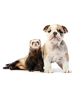 DOK 02 XA0043 01