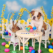 DOK 02 RS0004 03