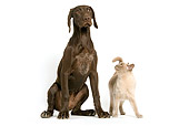 DOK 03 JE0001 01