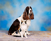 DOK 03 RK0044 03