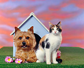 DOK 03 RK0075 02