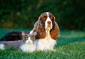 DOK 03 RK0089 09