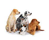 DOK 03 RK0114 02