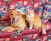 DOK 03 RK0132 05