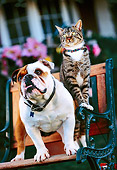 DOK 03 RK0173 03