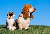 DOK 03 RK0186 14