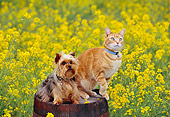 DOK 03 RK0193 14