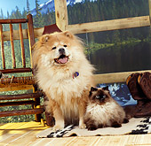 DOK 03 RS0013 01