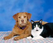 DOK 03 RK0015 04