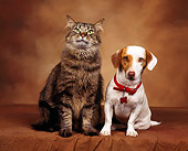 DOK 03 RK0023 01