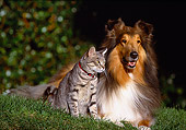 DOK 03 RK0092 44