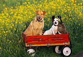 DOK 03 RK0133 13
