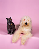 DOK 03 RK0135 02