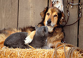 DOK 03 RK0141 14