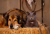 DOK 03 RK0141 27