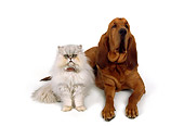 DOK 03 RK0160 01