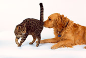 DOK 03 RK0163 22