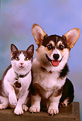 DOK 03 RK0172 10