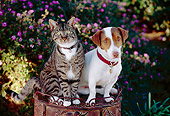 DOK 03 RK0175 06