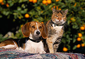 DOK 03 RK0178 02