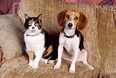 DOK 03 RK0179 08