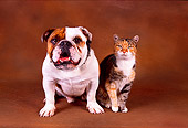 DOK 03 RK0182 01
