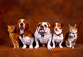 DOK 03 RK0195 20