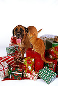DOK 03 RK0202 09